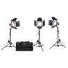 Kit de 3 Mandarines Led 24W  - Orange