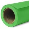 Fond vert incrustation papier BD VERI GREEN 218CM DE LARGE