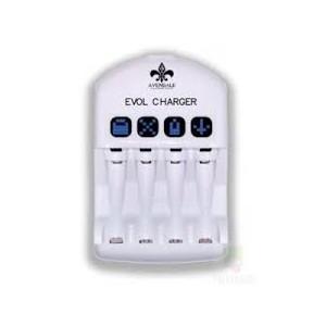 Chargeur de piles jetable/rechargeable
