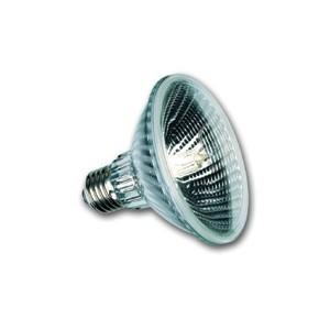 Lampe pour PAR30 75W 240V Par30/75SP