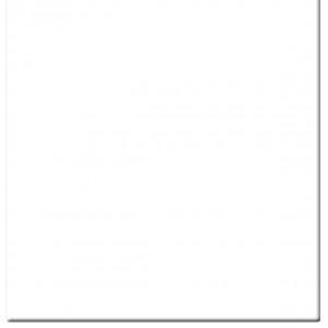 Filtre 5.650x5.650 TIFFEN Clear