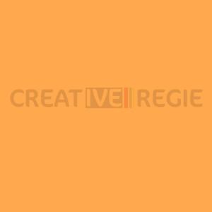 204 full ct orange